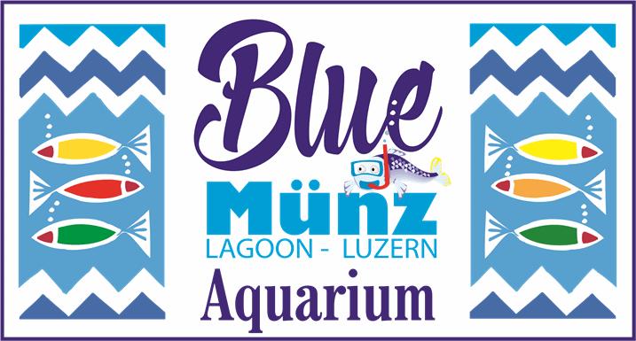 Blue-Aquarium in der Münzgasse - Münz-Lagoon - Luzern